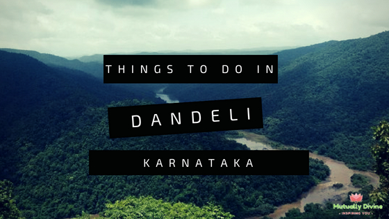 What to do in Dandeli