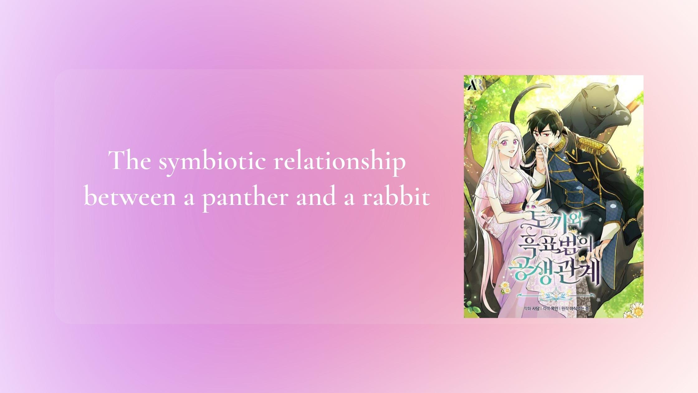 Symbiotic Relationship Between A Rabbit And A Black Panther Manga(Novel)
